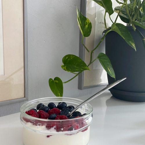 yogurt and berries purrrfect kitchen